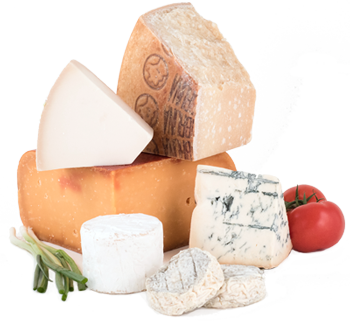 group of gourmet cheeses