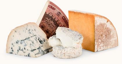 International Variety of Cheeses