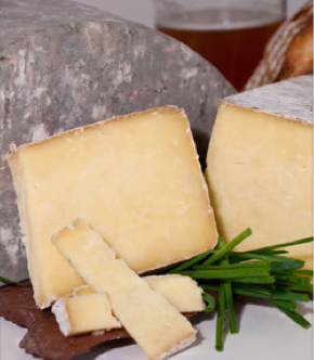 Cheese Facts - Gourmet Cheese Guide | Cheese of the Month Club